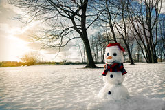 Smiling snowman at sunset Royalty Free Stock Photo