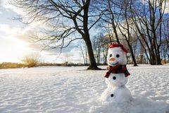 Smiling snowman at sunset Stock Photos