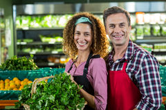Smiling staffs holding basket of vegetable in organic section Stock Photos