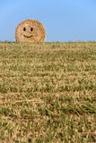 Smiling straw bale. Stock Image
