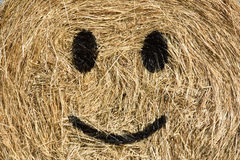 Smiling straw bale. Royalty Free Stock Photography