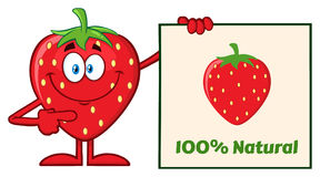 Smiling Strawberry Fruit Cartoon Mascot Character Pointing To A 100 Percent Natural Sign. Illustration Isolated On White Background Royalty Free Stock Photo