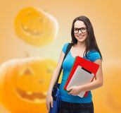 Smiling student girl with books and bag Stock Photography