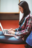 Smiling student sitting on the floor and using laptop Royalty Free Stock Images