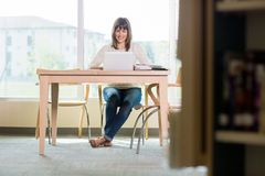 Smiling Student Studying In Library Stock Images