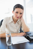 Smiling stylish brunette businesswoman holding her head and looking at camera Stock Photos
