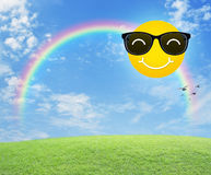 Smiling sun wearing sunglasses and birds Stock Photo