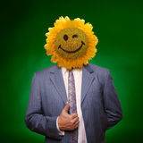 Smiling sunflower head man Royalty Free Stock Images
