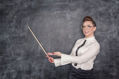 Smiling teacher with pointer Royalty Free Stock Images