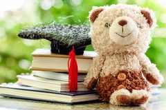 Smiling teddy bear doll with square academic cap and stack of bo stock photography