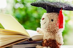 Smiling teddy bear doll with square academic cap and stack of op royalty free stock image