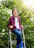 Smiling teenage girl sitting on stepladder at apple garden Stock Photo