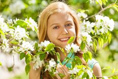 Smiling teenager girl with flowers on pear tree Stock Photography