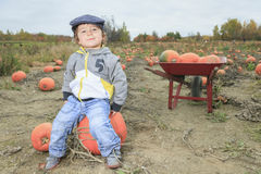 Smiling toddler boy with pumpkin on cold autumn Stock Image