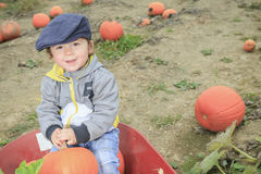 Smiling toddler boy with pumpkin on cold autumn Royalty Free Stock Photo