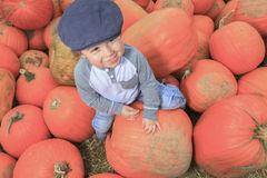 Smiling toddler boy with pumpkin on cold autumn Stock Photo