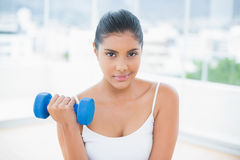 Smiling toned brunette working out with dumbbells Stock Images