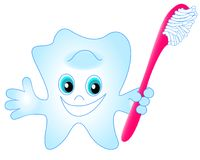 Smiling tooth toothbrush Stock Photography