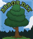 Smiling Tree Winking at you to Celebrate Arbor Day, Vector Illustration. Smiling tree in a beautiful forest view, winking at you and inviting to celebrate Arbor royalty free illustration
