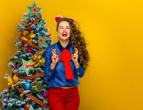 Smiling trendy woman near Christmas tree with crossed fingers. Festive season. smiling trendy woman near Christmas tree isolated on yellow background with Stock Photos