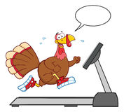 Smiling Turkey Cartoon Character Running Stock Photo