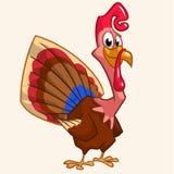 Smiling turkey Royalty Free Stock Photos