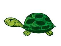 Smiling turtle cartoon Stock Photos
