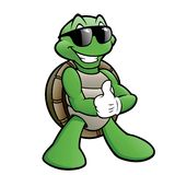 Smiling Turtle. Vector cartoon illustration of a turtle wearing sunglasses Royalty Free Stock Photos