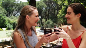 Smiling two friends toasting wine glasses. At outdoor restaurant stock video footage