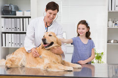 Smiling vet examining a dog with its owner. In medical office royalty free stock photos
