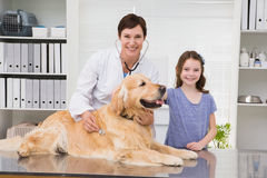 Smiling vet examining a dog with its owner. In medical office royalty free stock images