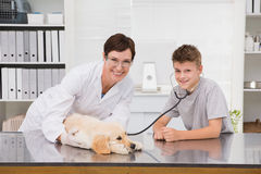 Smiling vet examining a dog with its owner Stock Photos