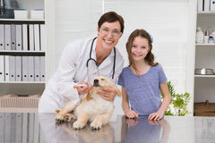 Smiling vet examining a dog with its owner Stock Images
