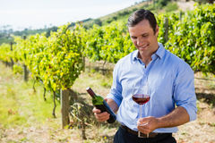 Smiling vintner examining wine Royalty Free Stock Image