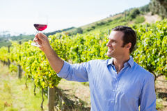 Smiling vintner holding glass of wine Stock Image
