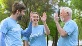 Smiling volunteers giving high five, cooperation gesture, environmental project. Stock footage stock footage