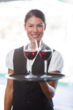 Smiling waitress holding a tray with glasses of red wine Royalty Free Stock Photo
