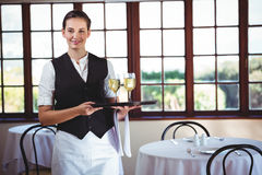 Smiling waitress holding a tray with glasses of wine Stock Image