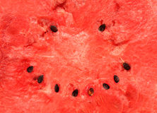 Smiling watermelon Royalty Free Stock Photos