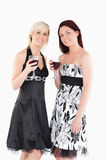 Smiling well-dressed women drinking red wine Stock Image