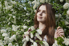 Smiling woman in the blossoming garden. In the bird cherry in the spring Stock Photo