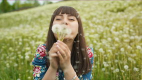 Smiling Woman Blow on a Dandelion. Woman blowing dandelion seeds at sunset stock video footage