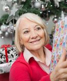 Smiling Woman With Christmas Gift Stock Photography