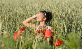 Smiling woman in cornfield. Smiling young  woman picking bouquet in cornfield Stock Photography