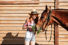 Smiling woman cowgirl giving fresh grass ti her horse Stock Photo