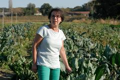 A woman in a cultivated field. A smiling woman in a cultivated field stock images