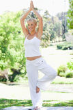 Smiling woman doing her yoga exercises. In the park Royalty Free Stock Photography