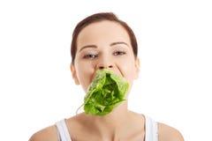 Smiling woman eating salat Royalty Free Stock Photography