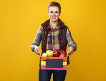 Smiling woman farmer on yellow background showing box of apples Stock Photography
