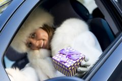 Smiling woman giving a purple gift box wearing white gloves. Woman holding a purple gift box wearing white gloves Stock Image